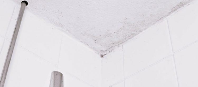 Vochtproblemen badkamer